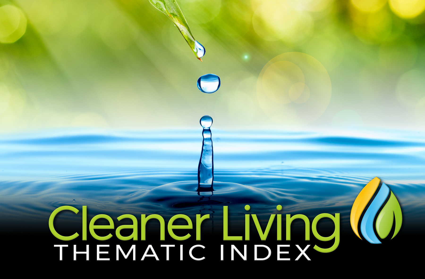 Cleaner Living Index